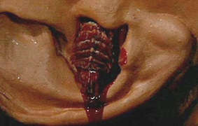 A Literal Earworm