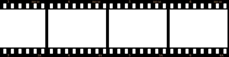 film roll - DriverLayer Search Engine